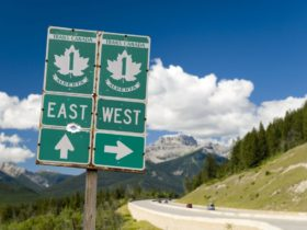 american-driving-through-canada-to-alaska-facing-$569,000-fine-for-stopping-to-sightsee