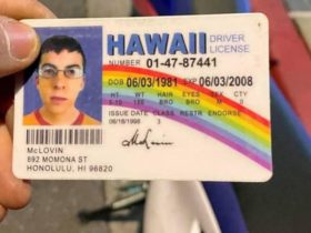 police-stop-motorcyclist-with-fake-mclovin-licence-from-the-movie-superbad