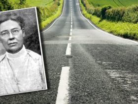 dr-june-mccarroll:-the-rebel-doctor-armed-with-a-paintbrush-who-defined-our-roads