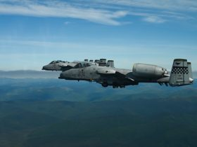 close-up-of-a-10-warthogs-shows-how-beautiful-these-ugly-machines-are