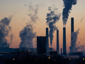 over-half-of-the-urban-emissions-in-the-world-are-produced-by-just-25-cities