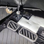 tesla-cars-attacked-by-rats