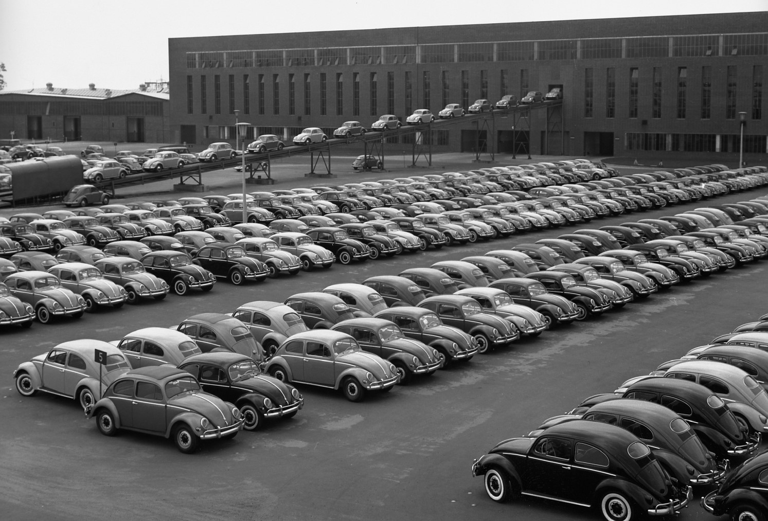 the-iconic-beetle-was-tried-and-tested-by-these-successors-that-never-were