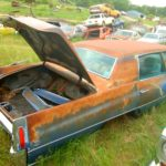 huge-junkyard-packed-with-legendary-fords-and-chevys-is-sad-yet-amazing