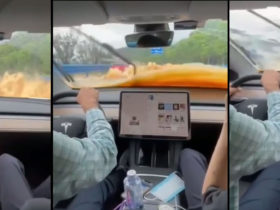 watch-in-cabin-view-of-a-tesla-driving-through-windshield-deep-water-in-china