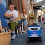 a-petite-and-cute-electric-kiwibot-will-bring-your-chow-straight-to-the-front-door