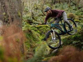 stif's-chromoly-sqautch-hardtail-mtb-breathes-new-life-into-steel-frame-bicycles