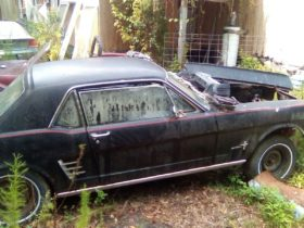 1966-ford-mustang-battling-with-the-plants-needs-total-restoration