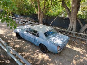 1965-ford-mustang-traded-in-to-a-dealer-spent-25-years-in-storage,-started-right-up