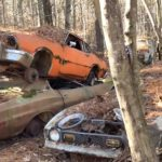 abandoned-forest-junkyard-looks-like-a-classic-car-ghost-town