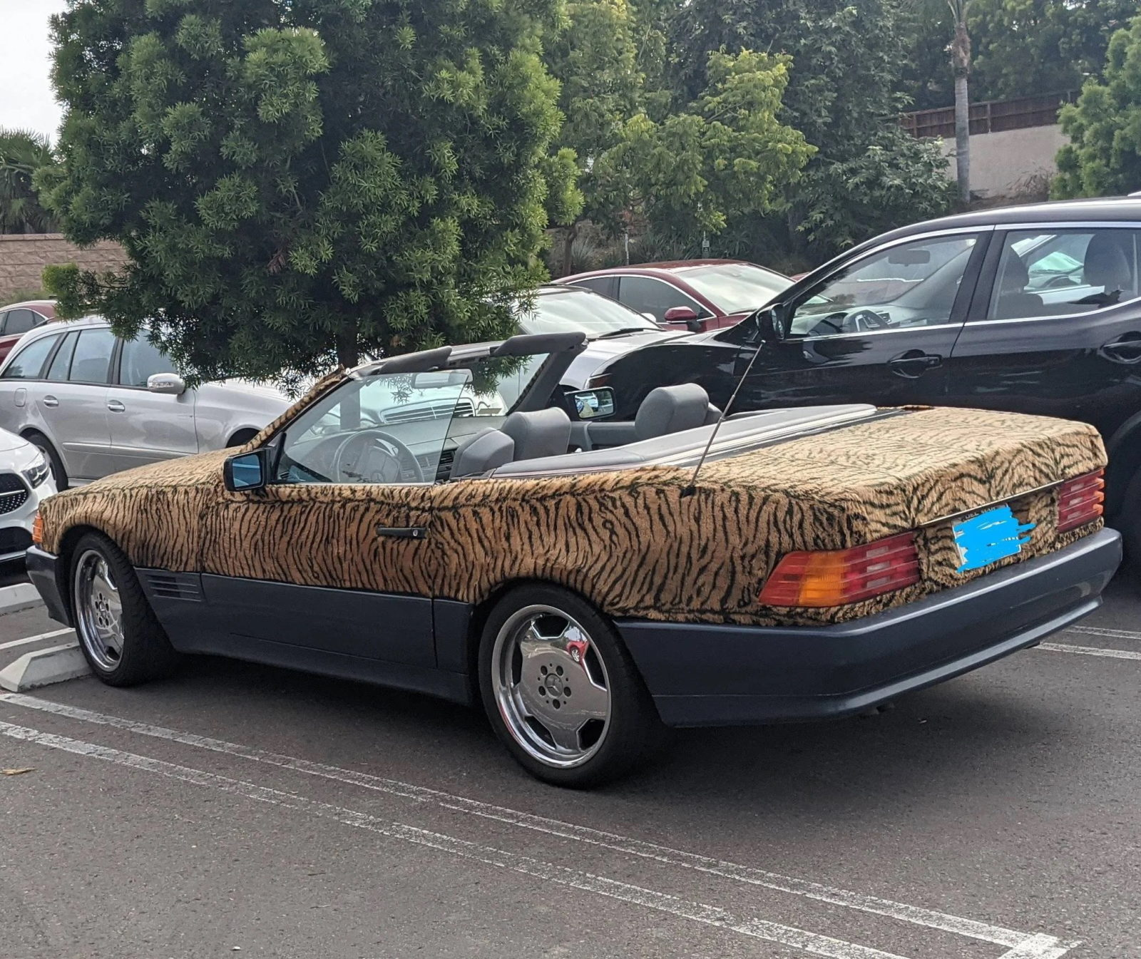 old-mercedes-sl-is-a-strong-and-independent-feline,-needs-xzibit-to-introduce-it