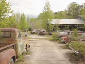 the-world's-largest-junkyard-is-home-to-more-than-4,000-classics,-celebrity-cars-included