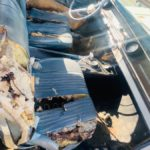 1965-chevrolet-impala-ss-looks-like-it-didn't-survive-a-kitten-attack,-shiny-engine-inside