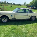 1966-ford-mustang-sitting-in-a-barn-for-a-very-long-time-comes-alongside-a-rusty-brother