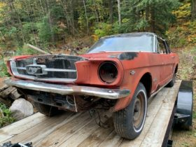 abandoned-for-years:-1964-1/2-ford-mustang-d-code-wants-to-get-back-on-the-road